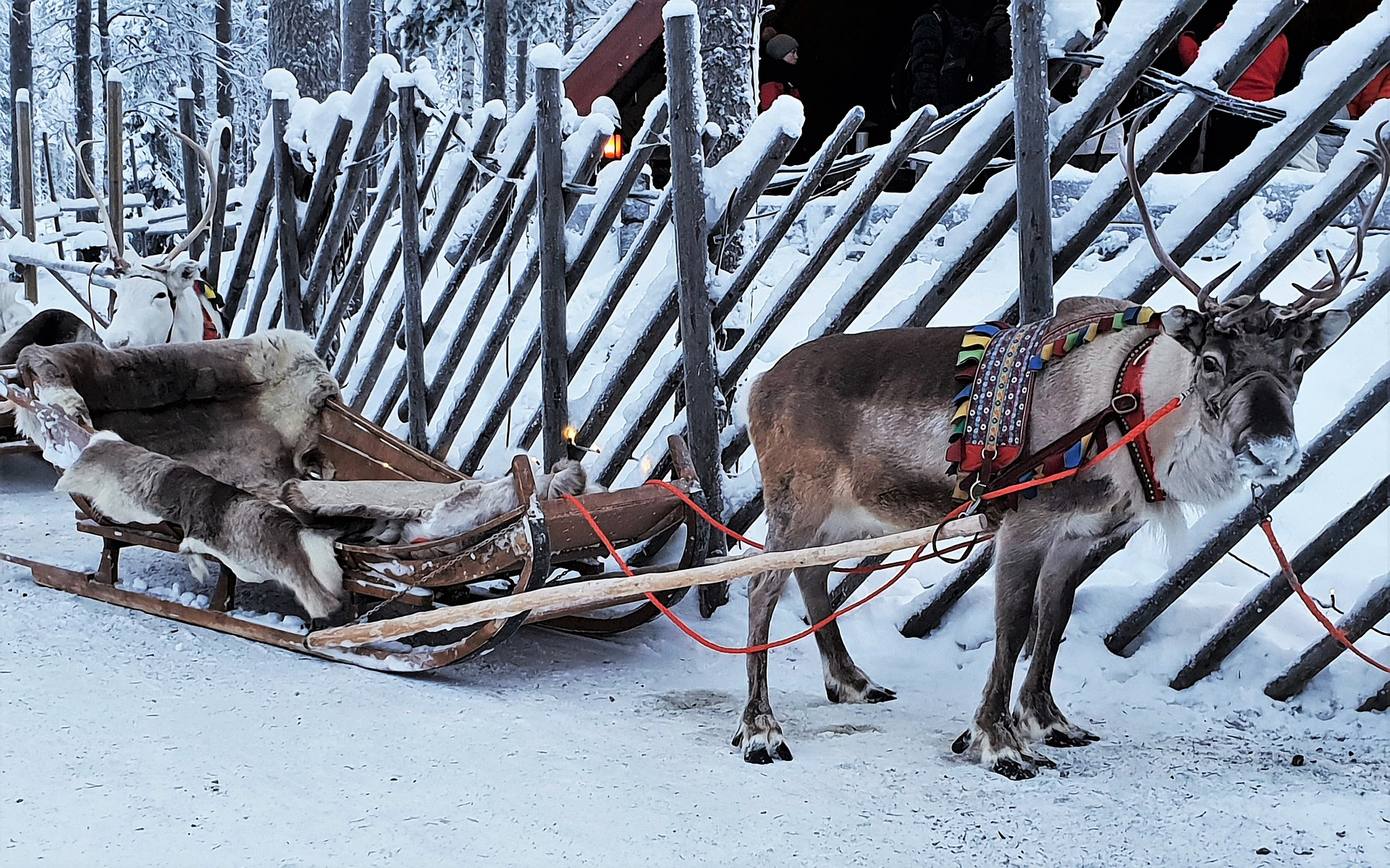 Rovaniemi – Aurora Boreale e Babbo Natale