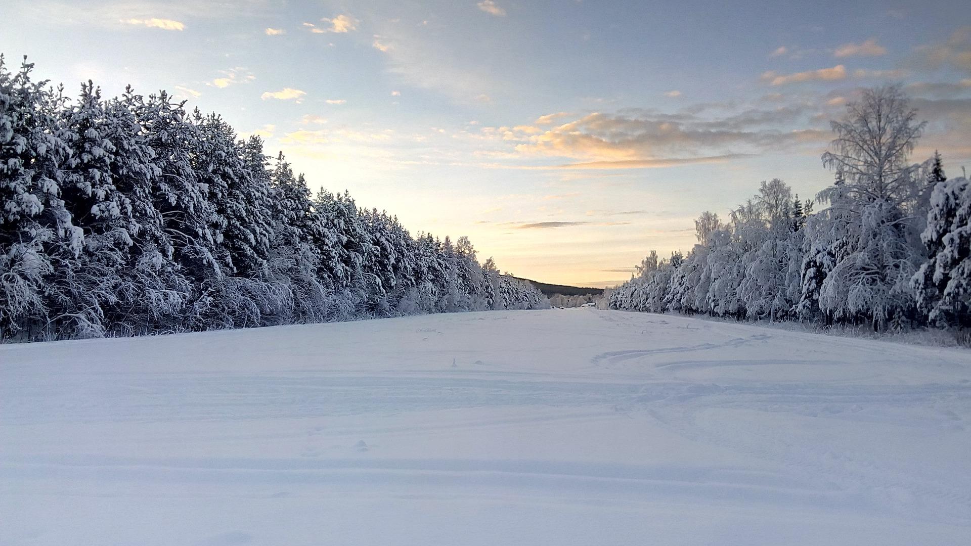 Svezia Artica